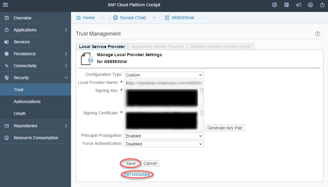 sap cloud platform metadata